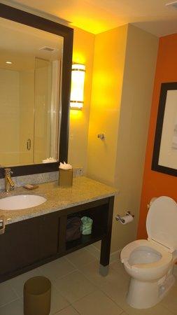 Hotel Indigo Atlanta Airport College Park: Bathroom