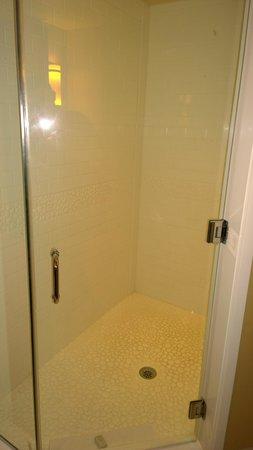 Hotel Indigo Atlanta Airport College Park: Large, White Shower