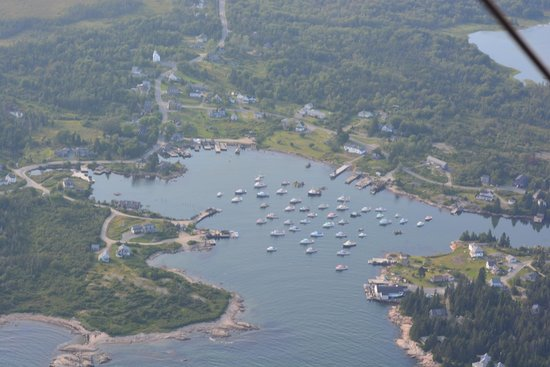 Acadia Air Tours: Corea Harbor from the biplane