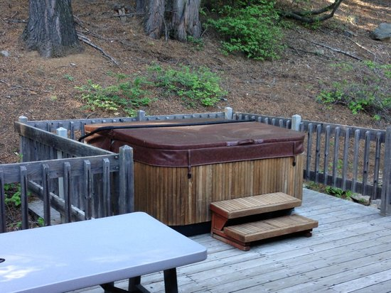 Yosemite's Scenic Wonders Vacation Rentals: Backyard hot tub