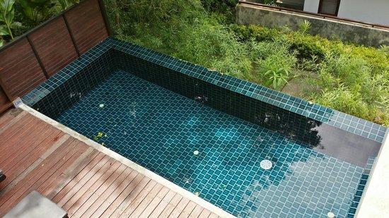 Villa Zolitude Resort and Spa : Private pool