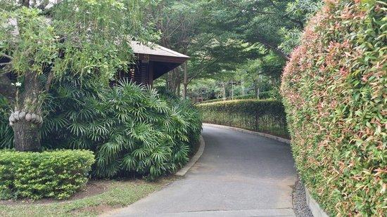 Villa Zolitude Resort and Spa: Private road to villas.