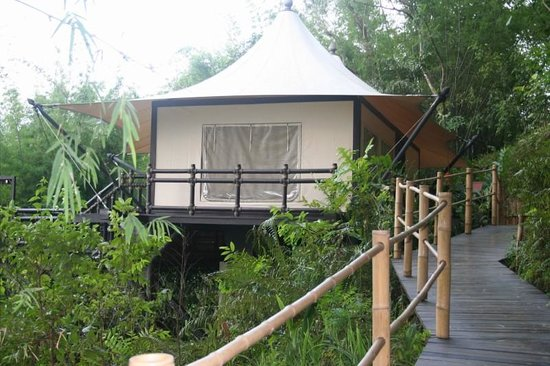 Four Seasons Tented Camp Golden Triangle: SideView of Tent Outside