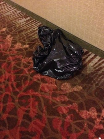 Hampton Inn Pigeon Forge: trash left in the hallway