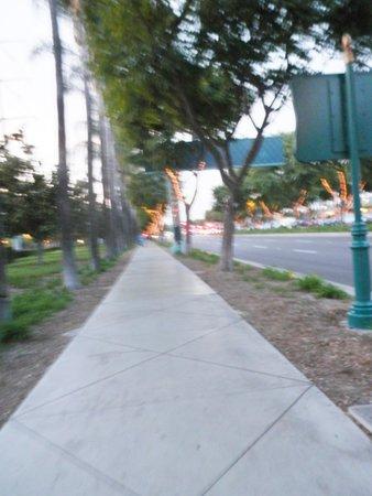 Alpine Inn : The walk to Disney