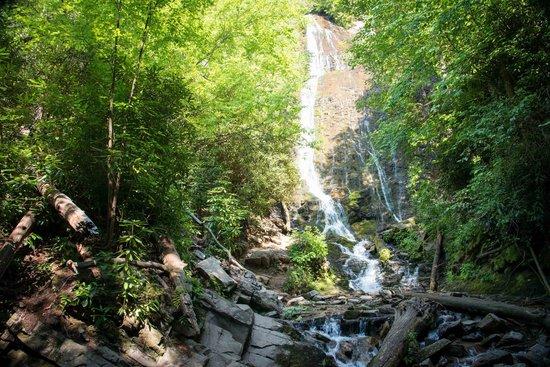 Mingo Falls from bottom