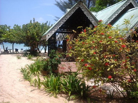 cozy cottage - picture of firefly beach cottages, negril - tripadvisor
