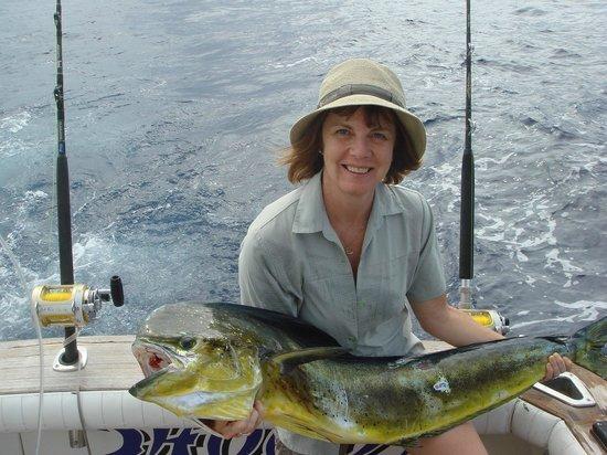 Wild Blue Fishing Charters : Mahi Mahi on Shogun