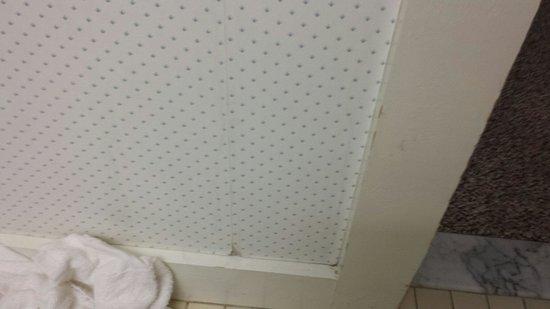 Golden Eagle Resort: Peeling wallpaper