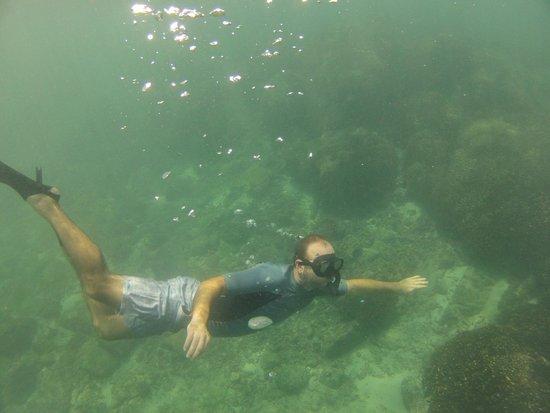 Pacifica Resort Ixtapa : Para bucear