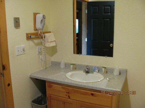 Eagle Ridge at Lutsen Mountain : Vanity in the bathroom
