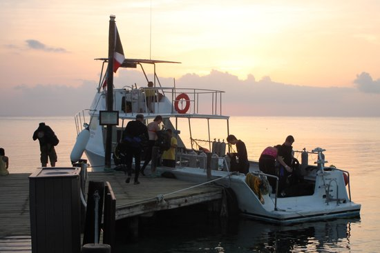 Iberostar Cozumel : getting ready for the night dive