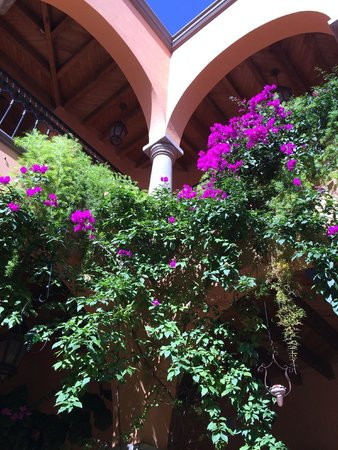 Antigua Capilla Bed and Breakfast: View up to 2nd floor