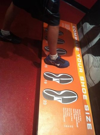 The College Basketball Experience: big feet of college basketball