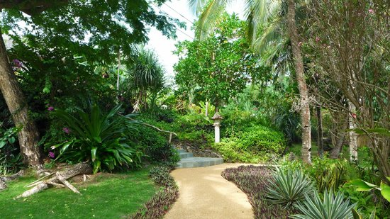 Coco Grove Beach Resort : Around the resort