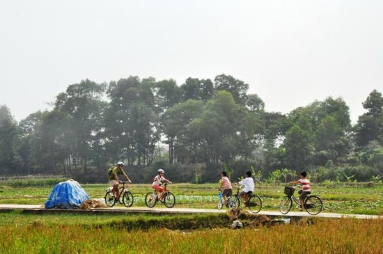Around Hanoi - Day Tours