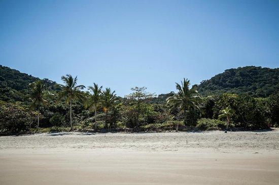 Lopes Mendes Beach: andrea torelli photography