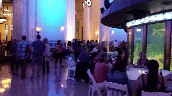 Shedd Aquarium : Jazzin at the Shedd