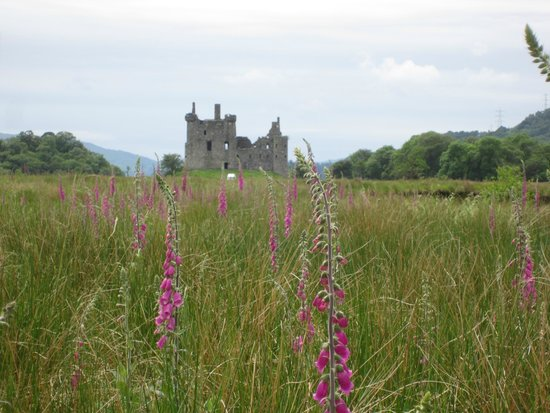 Kilchurn Castle : The walk up to the castle