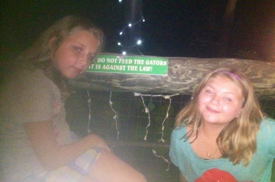 Clark's Fish Camp: Don't feed the gators !!! We saw three ! And a large zoo-like tank with a good sized gator and l