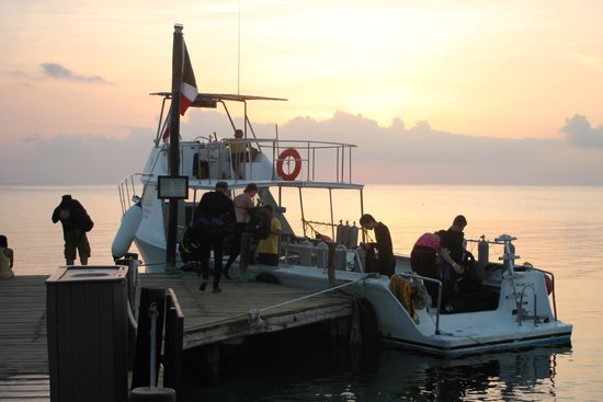 Dressel Divers : prepping for a night dive