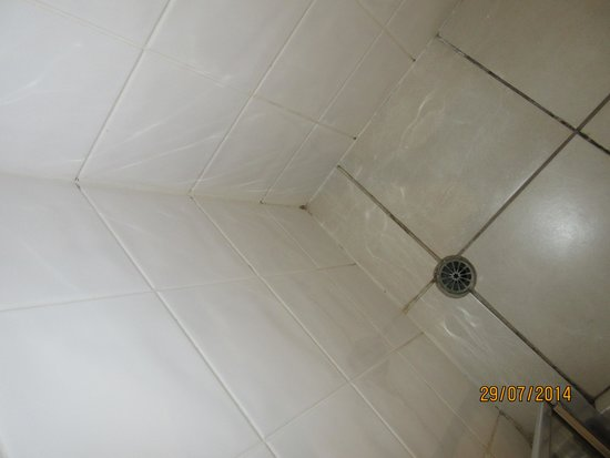 Best Western Astor Metropole Hotel & Apartments: Mold in shower