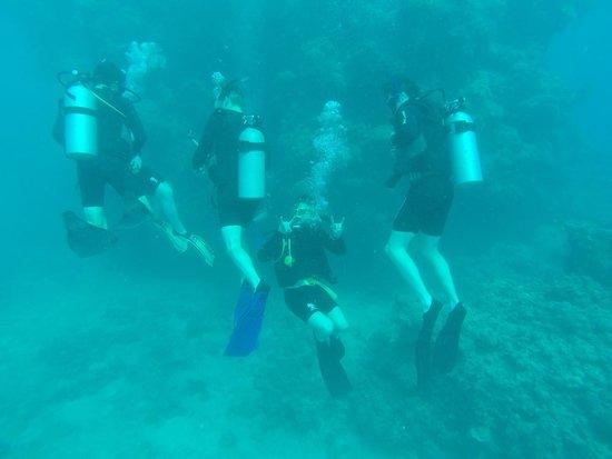 Cairns Dive Centre: Students Diving