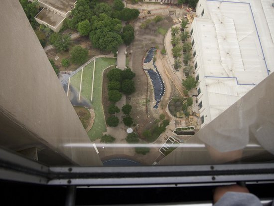 Tower of the Americas: Going down...!