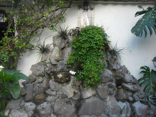 Hotel la Catedral: hermoso jardin