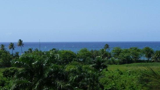 Las Palmas Inn : view from 2nd floor