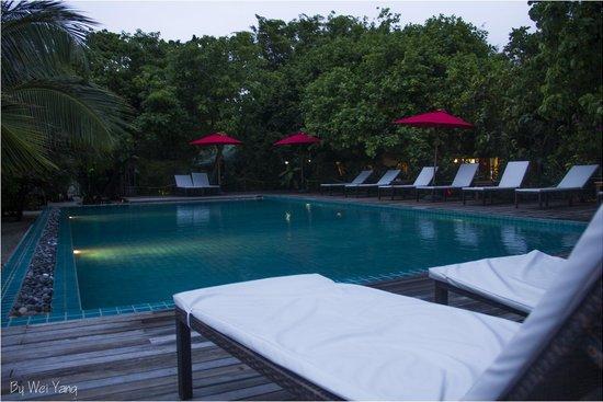 Eriyadu Island Resort : The pool