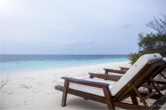 Eriyadu Island Resort : The beach from through out the rooms