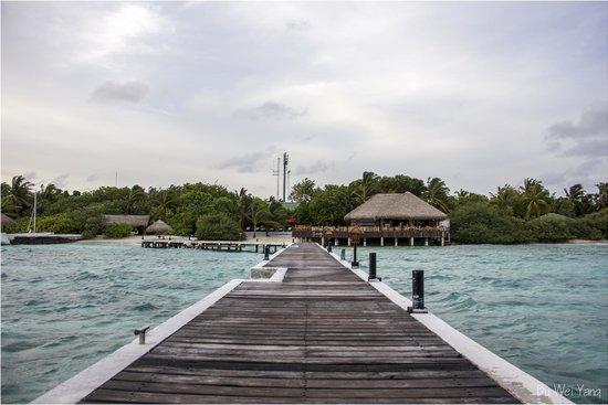 Eriyadu Island Resort : The dock