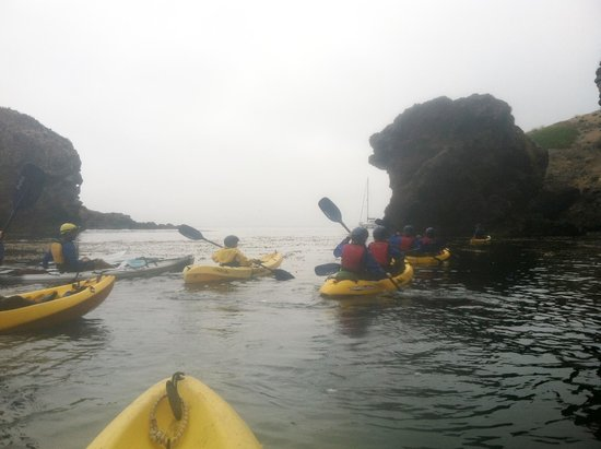Santa Barbara Adventure Company : kayak adventuring