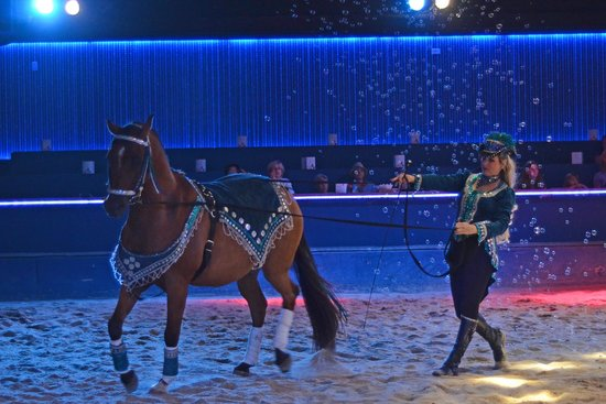 The Dancing Horses Theatre : Those aren't bubbles..this is actually under water.