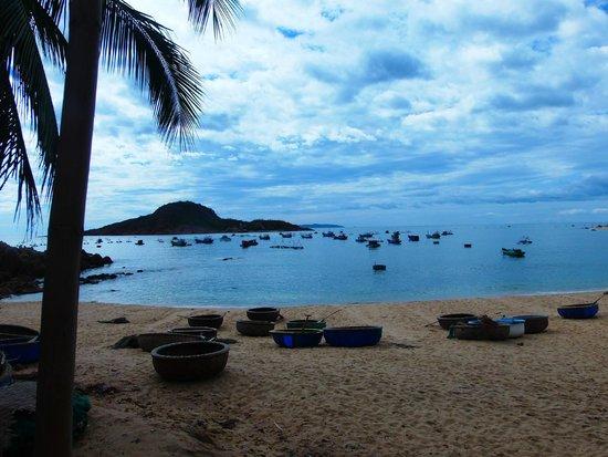 Haven Vietnam: Views from Haven