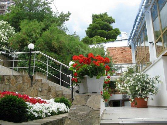 Levant Eco Hotel : Лестница к отелю