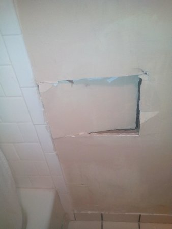 Palm Court Inn and Suites: the bathroom wall