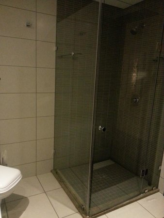 Premier Hotel OR Tambo: Shower cubicle