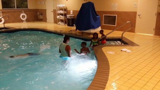 Homewood Suites by Hilton Virginia Beach/Norfolk Airport: Pool