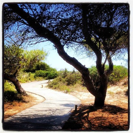 Vivosa Apulia Resort : accesso alla spiaggia