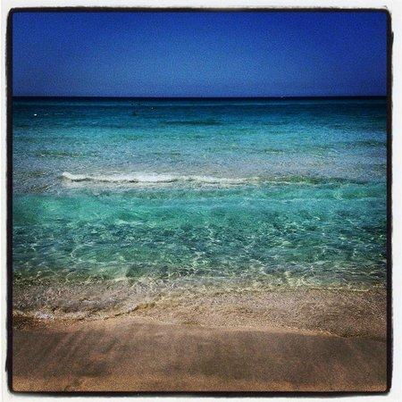 Vivosa Apulia Resort : il mare di Ugento davanti alla spiaggia dell'Hotel