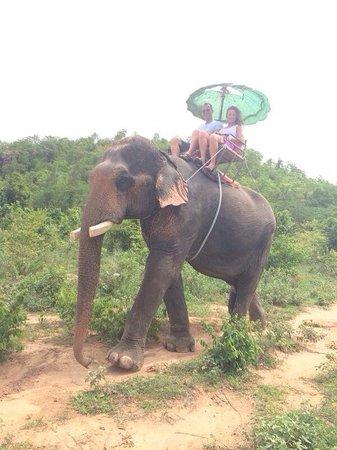 Hutsadin Elephant Foundation: Elephant trekking