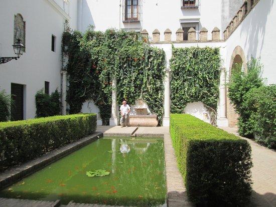 Alcázar: Tranquil court yard