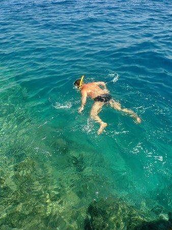 Bel Air Azur Resort: Коралловые рифы в конце понтона