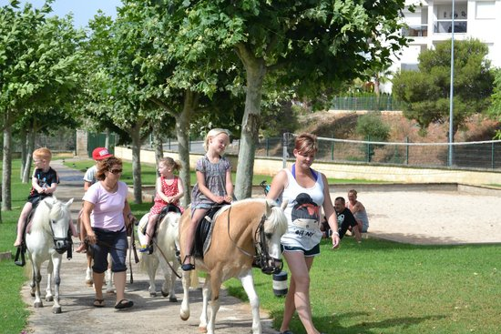 HSM Canarios Park: Pony riding (mini club)