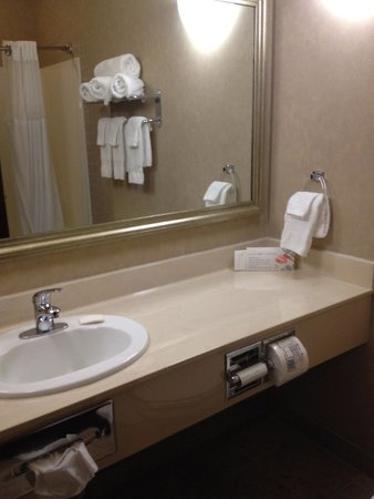 Ramada Camrose: Bathroom