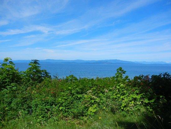 Milner Gardens & Woodland : ガーデンと海