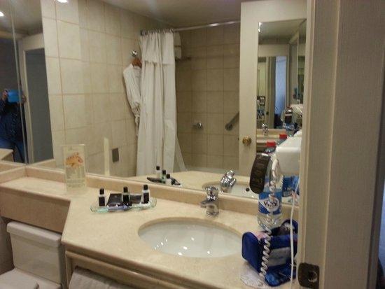 Park Plaza: Ванная комната