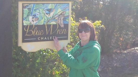 Clarendon Forest Retreat : Blue Wren